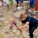 Jardins de chuva estão surgindo pela cidade de São Paulo